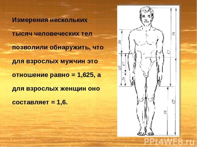 Измерения нескольких тысяч человеческих тел позволили обнаружить, что для взрослых мужчин это отношение равно = 1,625, а для взрослых женщин оно составляет = 1,6.