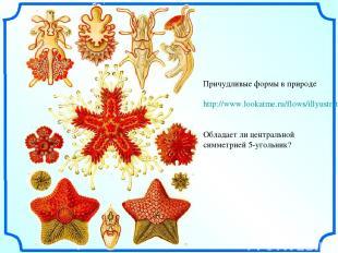 Причудливые формы в природе http://www.lookatme.ru/flows/illyustratsiya/posts/36