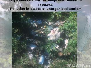 Загрязнение в местах неорганизованного туризма Pollution in places of unorganize
