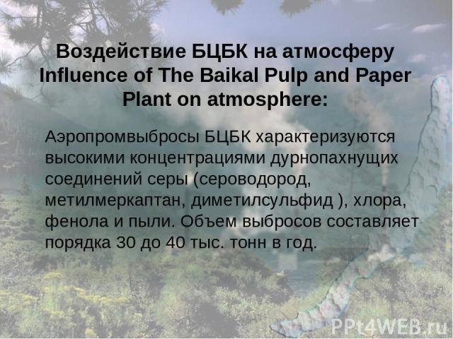 Воздействие БЦБК на атмосферу Influence of The Baikal Pulp and Paper Plant on atmosphere: Аэропромвыбросы БЦБК характеризуются высокими концентрациями дурнопахнущих соединений серы (сероводород, метилмеркаптан, диметилсульфид ), хлора, фенола и пыли…