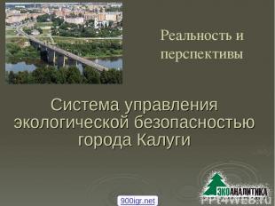 Система управления экологической безопасностью города Калуги Реальность и перспе