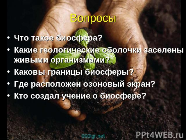 Вопросы Что такое биосфера? Какие геологические оболочки заселены живыми организмами? Каковы границы биосферы? Где расположен озоновый экран? Кто создал учение о биосфере? 900igr.net
