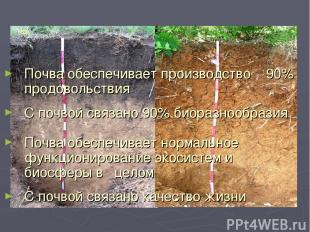 Почва обеспечивает производство 90% продовольствия С почвой связано 90% биоразно