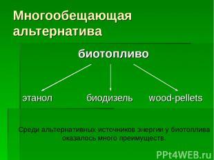 Многообещающая альтернатива биотопливо этанол биодизель wood-pellets Среди альте