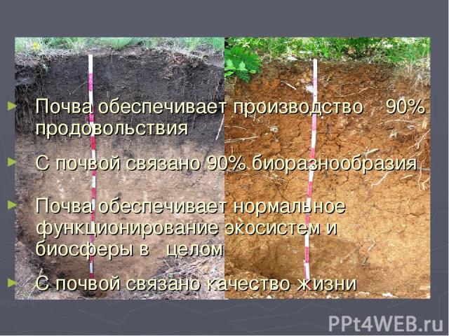 Почва обеспечивает производство 90% продовольствия С почвой связано 90% биоразнообразия Почва обеспечивает нормальное функционирование экосистем и биосферы в целом С почвой связано качество жизни