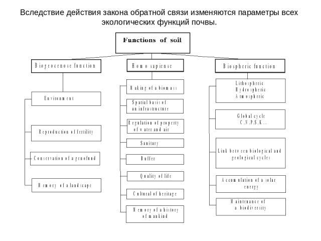 Вследствие действия закона обратной связи изменяются параметры всех экологических функций почвы.