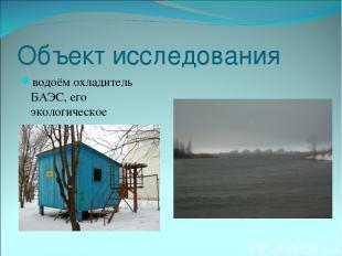 Объект исследования водоём охладитель БАЭС, его экологическое состояние.