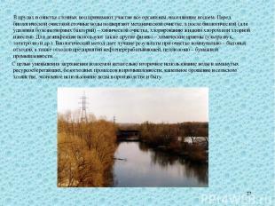 * В прудах в очистке сточных вод принимают участие все организмы, населяющие вод