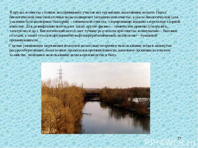 * В прудах в очистке сточных вод принимают участие все организмы, населяющие водоем. Перед биологической очисткой сточные воды подвергают механической очистке, а после биологической (для удаления болезнетворных бактерий) – химической очистке, хлорир…