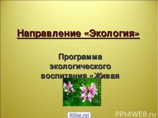 Направление «Экология» Программа экологического воспитания «Живая планета» 900ig