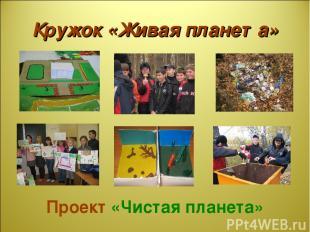 Кружок «Живая планета» Проект «Чистая планета»