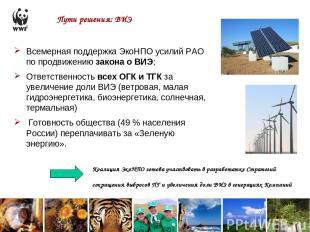 Пути решения: ВИЭ Всемерная поддержка ЭкоНПО усилий РАО по продвижению закона о