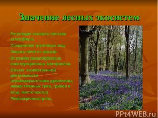 Значение лесных экосистем Регуляция газового состава атмосферы. Сохранение грунт