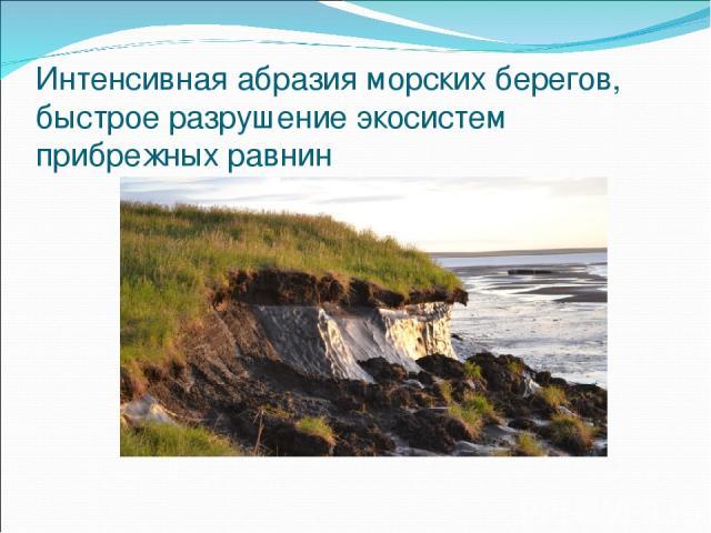 Интенсивная абразия морских берегов, быстрое разрушение экосистем прибрежных равнин