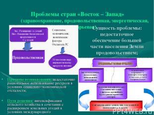 Проблемы стран «Восток – Запад» (здравоохранение, продовольственная, энергетичес