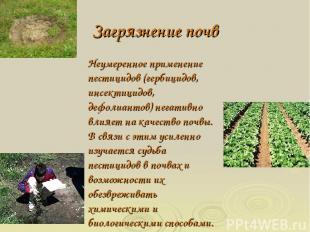 Загрязнение почв Неумеренное применение пестицидов (гербицидов, инсектицидов, де