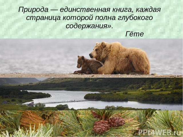 Природа — единственная книга, каждая страница которой полна глубокого содержания». Гёте