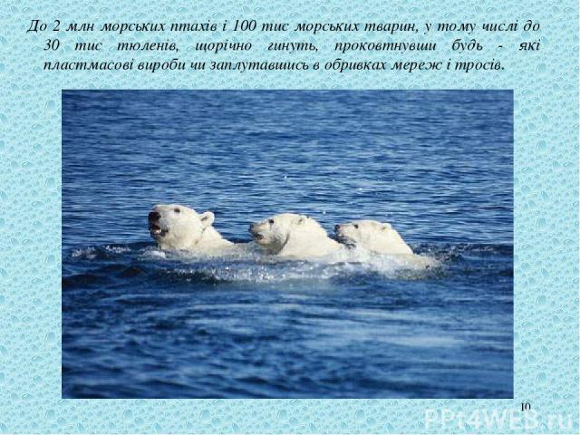 * До 2 млн морських птахів і 100 тис морських тварин, у тому числі до 30 тис тюленів, щорічно гинуть, проковтнувши будь - які пластмасові вироби чи заплутавшись в обривках мереж і тросів.