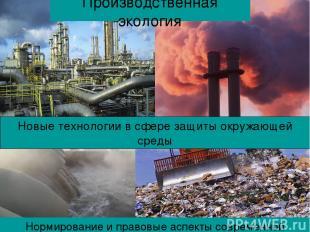 Нормирование и правовые аспекты современной экологии Производственная экология Н