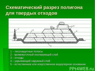 Схематический разрез полигона для твердых отходов 1 – лесозащитные полосы 2 - пр