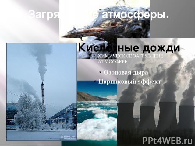 Загрязнение атмосферы. Кислотные дожди ХИМИЧЕСКОЕ ЗАГРЯЗНЕИЕ АТМОСФЕРЫ Озоновая дыра Парниковый эффект