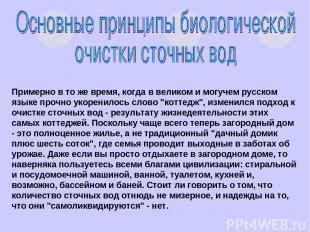 Примерно в то же время, когда в великом и могучем русском языке прочно укоренило