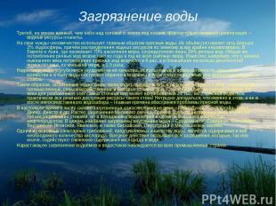 Загрязнение воды Третий, не менее важный, чем небо над головой и земля под ногам