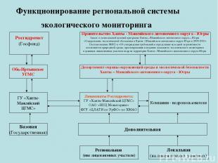 Функционирование региональной системы экологического мониторинга Росгидромет (Го