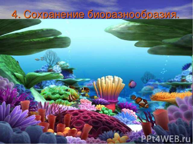 4. Сохранение биоразнообразия.