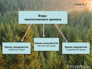 Виды экологического кризиса Схема № 2 Кризис продуцентов 10000 лет назад Кризис