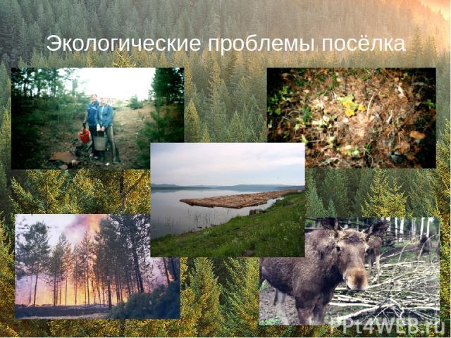 Экологические проблемы посёлка