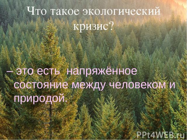 Что такое экологический кризис? – это есть напряжённое состояние между человеком и природой.