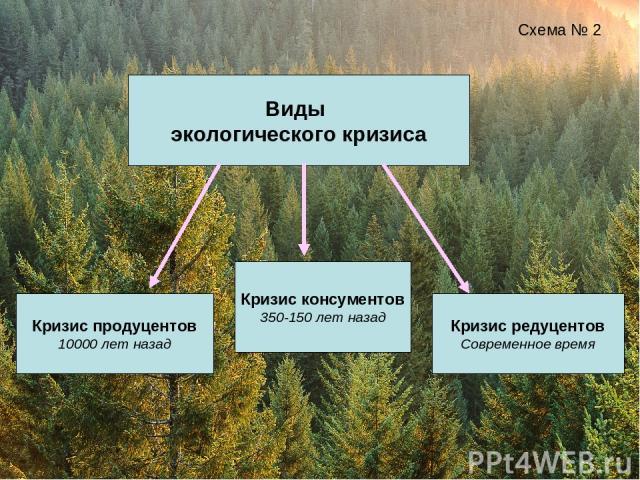 Виды экологического кризиса Схема № 2 Кризис продуцентов 10000 лет назад Кризис консументов 350-150 лет назад Кризис редуцентов Современное время