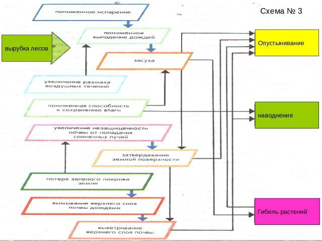 Схема № 3 Опустынивание Гибель растений наводнения вырубка лесов