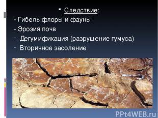 Следствие: - Гибель флоры и фауны - Эрозия почв Дегумификация (разрушение гумуса