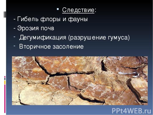 Следствие: - Гибель флоры и фауны - Эрозия почв Дегумификация (разрушение гумуса) Вторичное засоление
