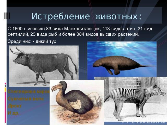 Истребление животных: С 1600 г. исчезло 83 вида Млекопитающих, 113 видов птиц, 21 вид рептилий, 23 вида рыб и более 384 видов высших растений. Среди них: - дикий тур Стеллерова корова Сумчатый волк Дронт И др.