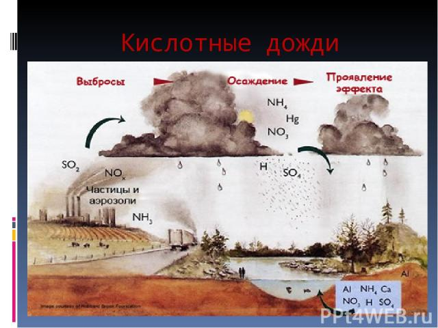 the environmental hazards of acid rain