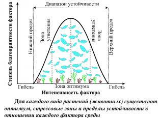 Для каждого вида растений (животных) существуют оптимум, стрессовые зоны и преде