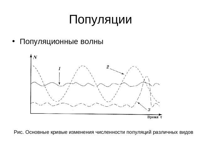 Популяции Популяционные волны Рис. Основные кривые изменения численности популяций различных видов