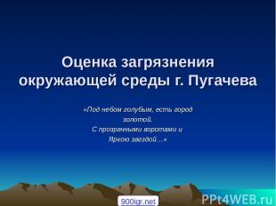 Оценка загрязнения окружающей среды г. Пугачева «Под небом голубым, есть город з