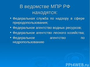 В ведомстве МПР РФ находятся: Федеральная служба по надзору в сфере природопольз