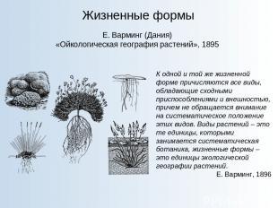 Жизненные формы Е. Варминг (Дания) «Ойкологическая география растений», 1895 К о