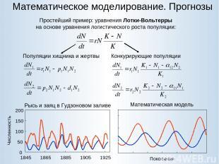 Математическое моделирование. Прогнозы Простейший пример: уравнения Лотки-Вольте