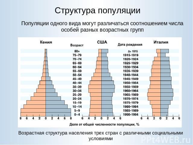 Структура популяции Популяции одного вида могут различаться соотношением числа особей разных возрастных групп Возрастная структура населения трех стран с различными социальными условиями