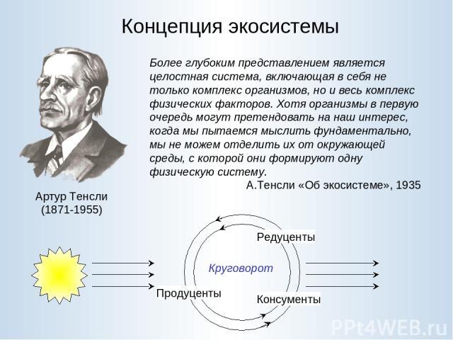Концепция экосистемы Артур Тенсли (1871-1955) Более глубоким представлением является целостная система, включающая в себя не только комплекс организмов, но и весь комплекс физических факторов. Хотя организмы в первую очередь могут претендовать на на…