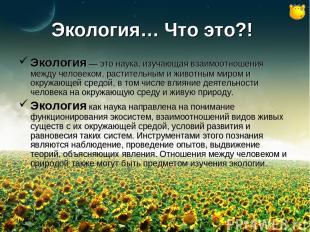 Экология… Что это?! Экология — это наука, изучающая взаимоотношения между челове