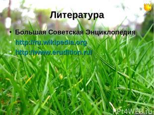 Литература Большая Советская Энциклопедия http://ru.wikipedia.org http://www.eru