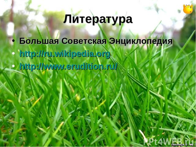 Литература Большая Советская Энциклопедия http://ru.wikipedia.org http://www.erudition.ru/