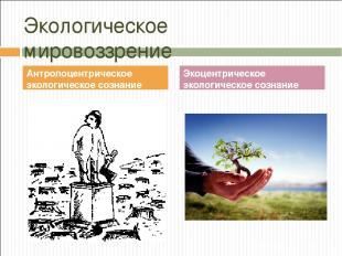 Экологическое мировоззрение Антропоцентрическое экологическое сознание Экоцентри